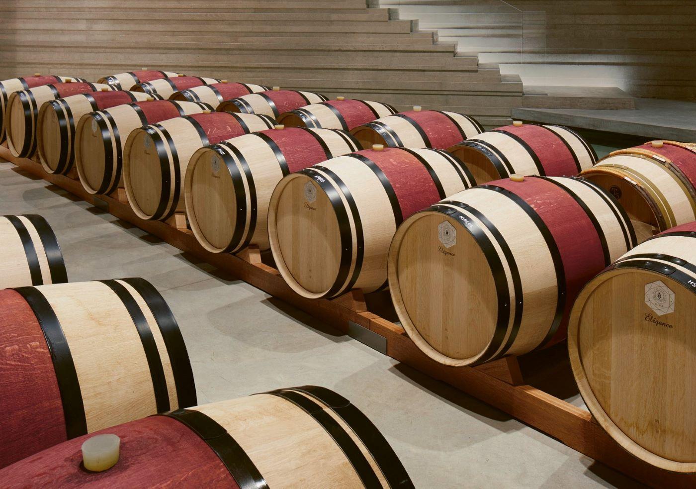 Alles zum Thema Wein: Nützliches Wissen